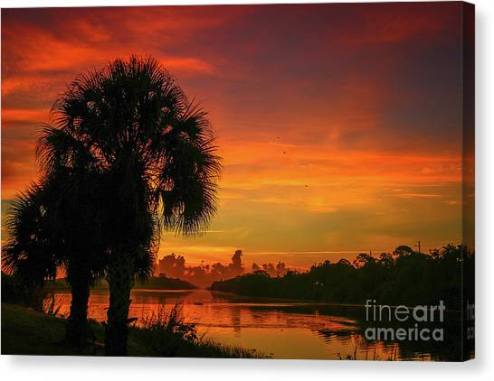 Canvas Print featuring the photograph Palm Silhouette Sunrise by Tom Claud