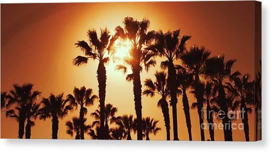 Palm Tree Dreams Canvas Print