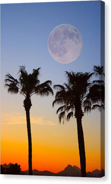 Palm Trees Sunsets Canvas Print - Palm Tree Full Moon Sunset by James BO Insogna