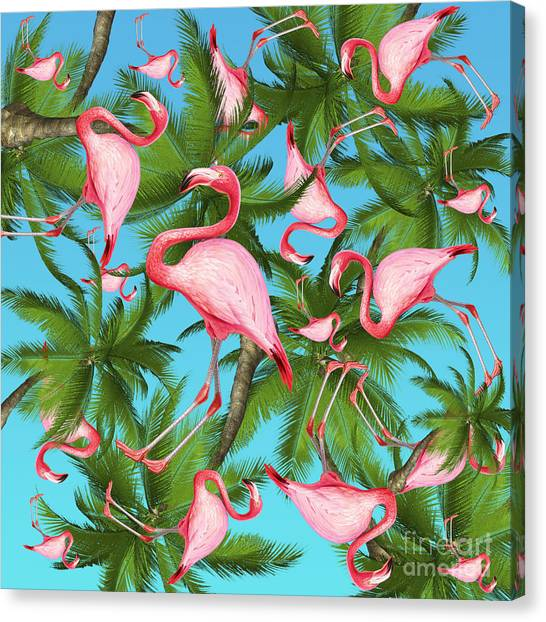 Flamingos Canvas Print - Palm Tree by Mark Ashkenazi
