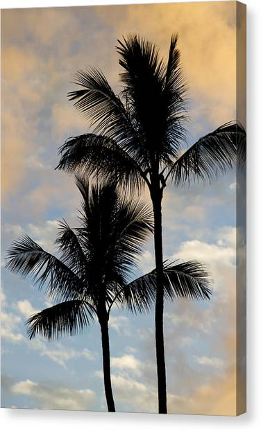 Palm Trees Sunsets Canvas Print - Palm Tree Sunset Hawaii by Dustin K Ryan