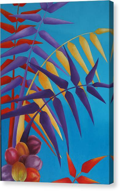 Palm Tree With Coconuts 1 Canvas Print