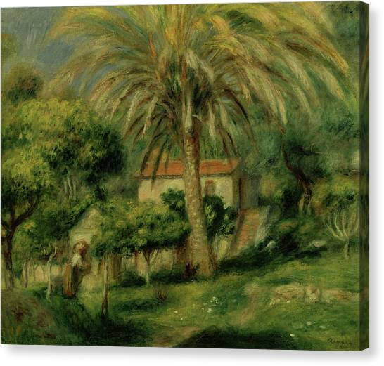 Wild Orchards Canvas Print - Palm Trees by Pierre Auguste Renoir