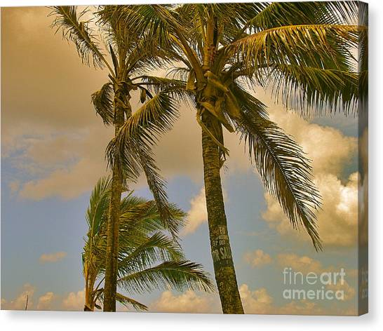 Canvas Print - Palm Trees by Silvie Kendall