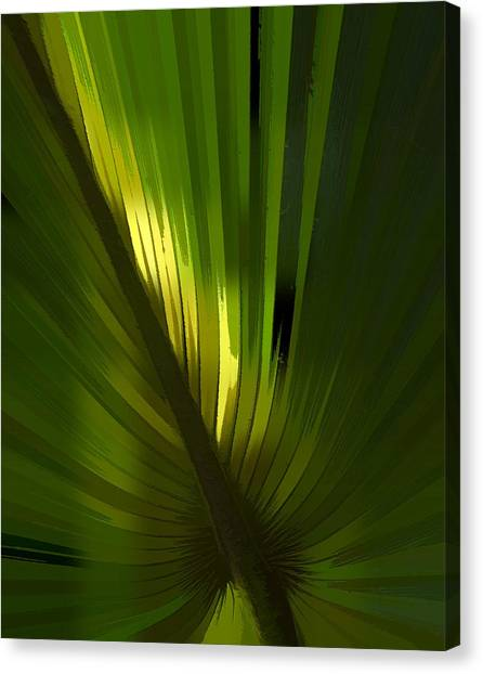 Bass Fishing Canvas Print - Palmetto Embrace by Marvin Spates