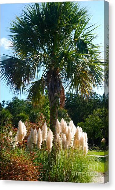 Palmetto Tree  Canvas Print