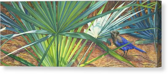 Bluejays Canvas Print - Palmettos And Stellars Blue by Marguerite Chadwick-Juner