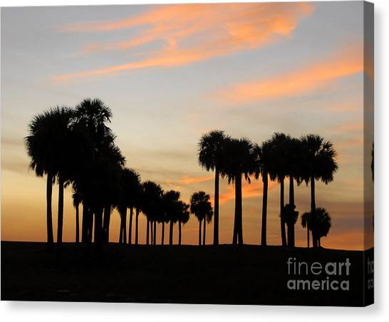Palm Trees Sunsets Canvas Print - Palms At Sunset by David Lee Thompson