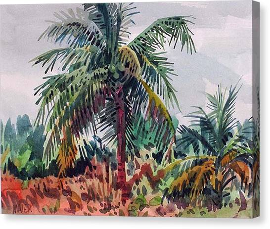 Coconut Canvas Print - Palms On Big Pine Key by Donald Maier