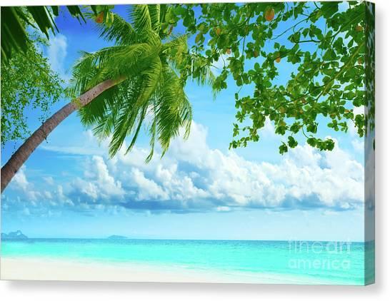 Phi Phi Island Canvas Print - Palmtree On The Beach by MotHaiBaPhoto Prints