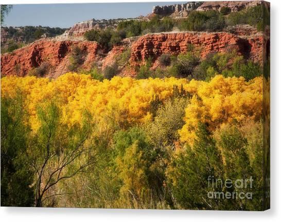 Palo Duro Canyon Fall Colors Canvas Print