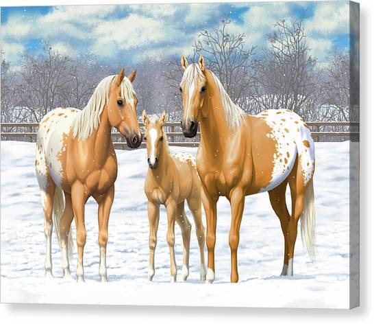 Palomino Horse Canvas Print - Palomino Appaloosa Horses In Winter by Crista Forest
