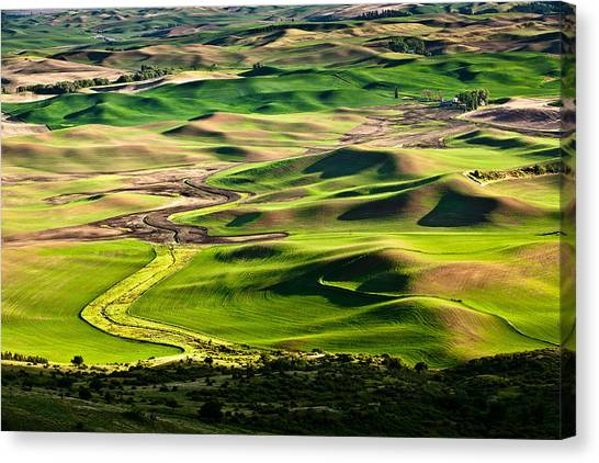 Palouse Hills 2 Canvas Print