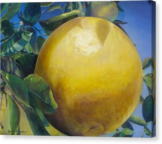 Pamplemousse Canvas Print by Muriel Dolemieux