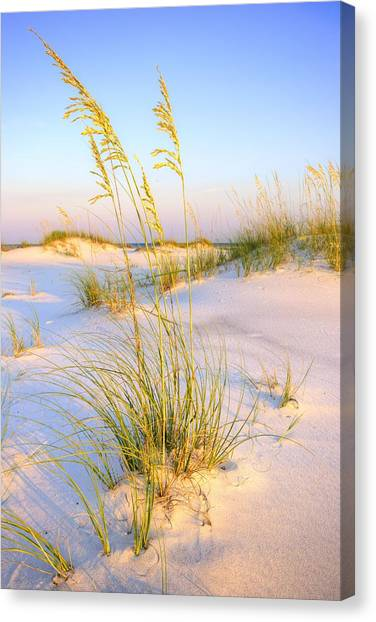 Panama City Sands Canvas Print by JC Findley