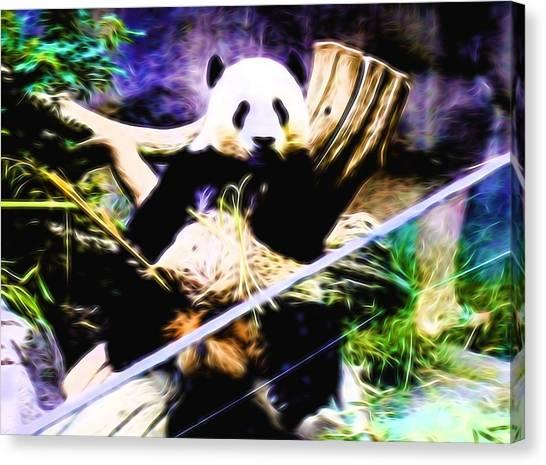 Panda Bear 1 Canvas Print