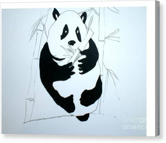 Panda Bear And Bamboo Canvas Print by Hal Newhouser