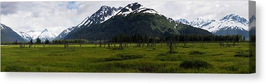 Panorama Of Green Meadow Canvas Print
