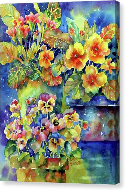 Pansies And Primroses Canvas Print