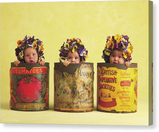 Mother Canvas Print - Pansy Tins by Anne Geddes