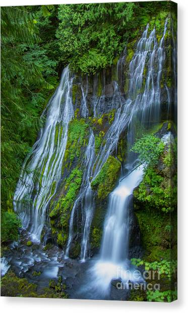 Panther Creek Falls Summer Waterfall 1 Canvas Print
