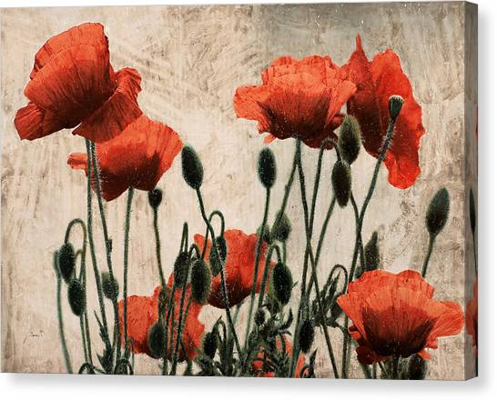 Red Poppies Canvas Print - Papaveri Rossi by Guido Borelli