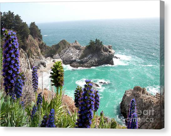 Paradise Cove Canvas Print by Digartz - Thom Williams
