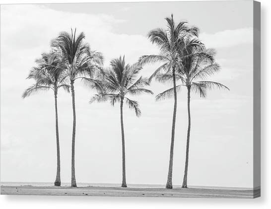 Paradise In Black And White II Canvas Print