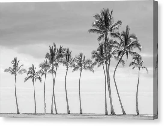Paradise In Black And White Canvas Print