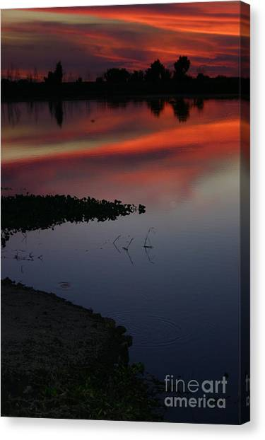 Parana Sunset Canvas Print