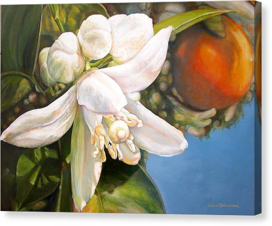 Parfum D Canvas Print by Muriel Dolemieux