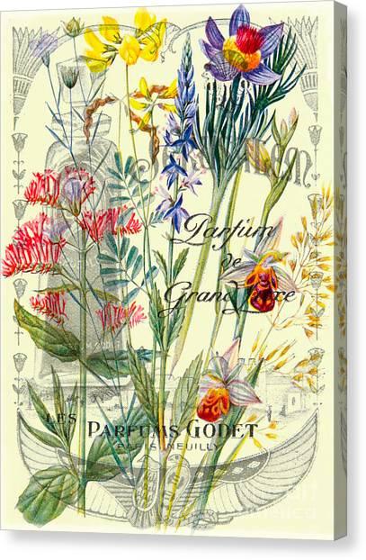 Baroque Art Canvas Print - Parfums Godet Paris by Delphimages Photo Creations