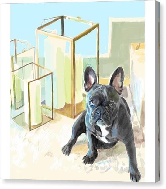 Realism Art Canvas Print - Paris The Frenchie #frenchgirlsapp by James Garza