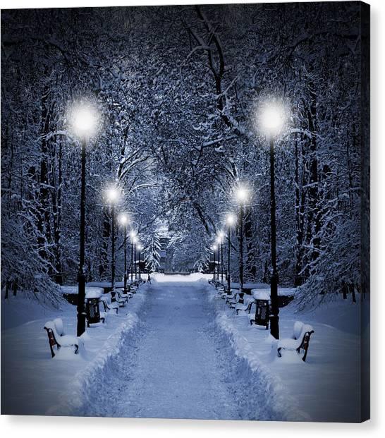 Park Scene Canvas Print - Park At Christmas by Jaroslaw Grudzinski