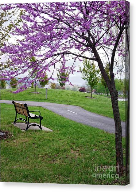 Canvas Print featuring the photograph Park Bench With Redbud Tree Winona Mn By Yearous by Kari Yearous