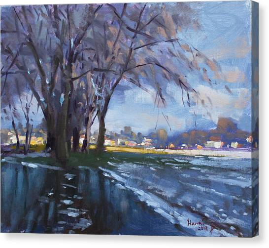 Snow Melt Canvas Print - Park Flooding From Snow Melt by Ylli Haruni