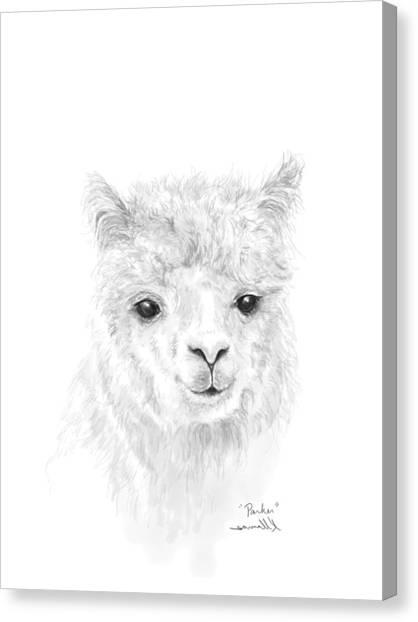 Canvas Print - Parker by K Llamas