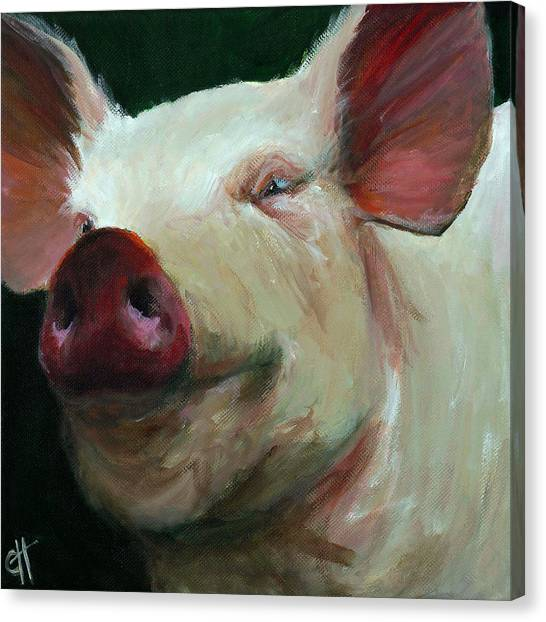 Pig Farms Canvas Print - Parker The Pig by Cari Humphry