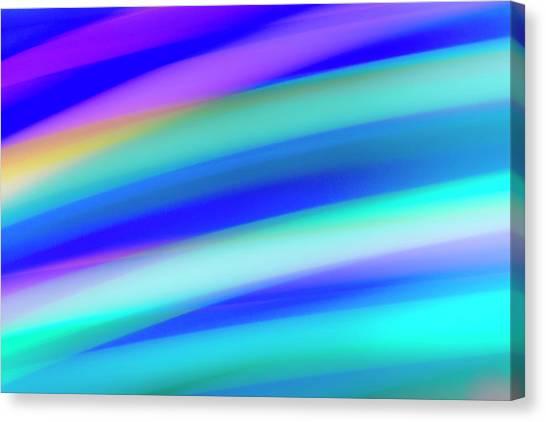 Parrotfish No. 2 Canvas Print