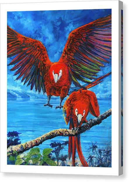 Parrots In Costa Rica Canvas Print