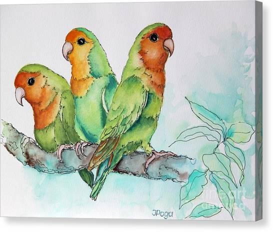 Parrots Trio Canvas Print