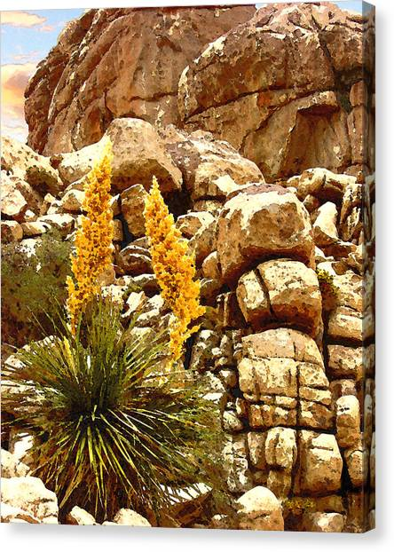 Parry Nolina Canvas Print