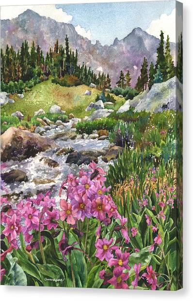 Pine Trees Canvas Print - Parry's Primrose by Anne Gifford