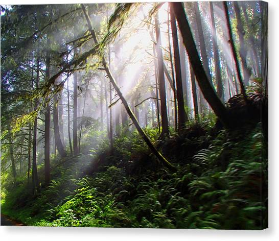 Parting Of The Mist Canvas Print
