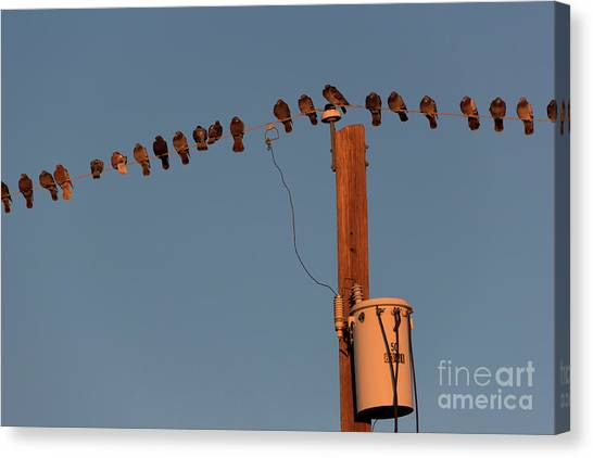 Nsa Canvas Print - Party Line by Jon Burch Photography