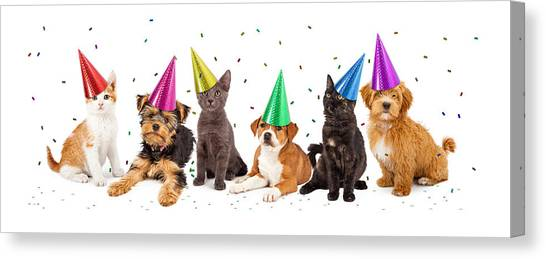 Party Puppies And Kittens With Confetti Canvas Print