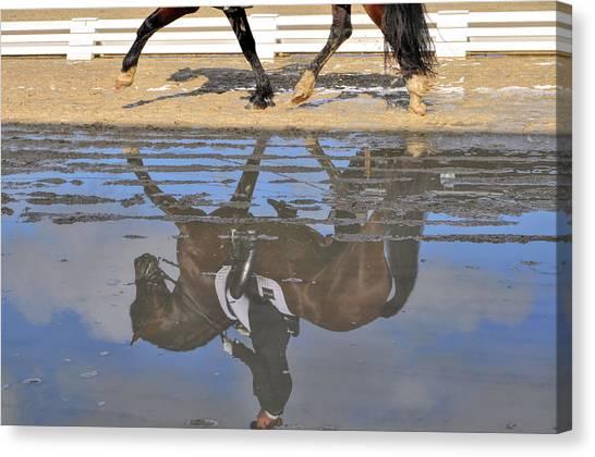 Pas De Deux Reflected Canvas Print by JAMART Photography