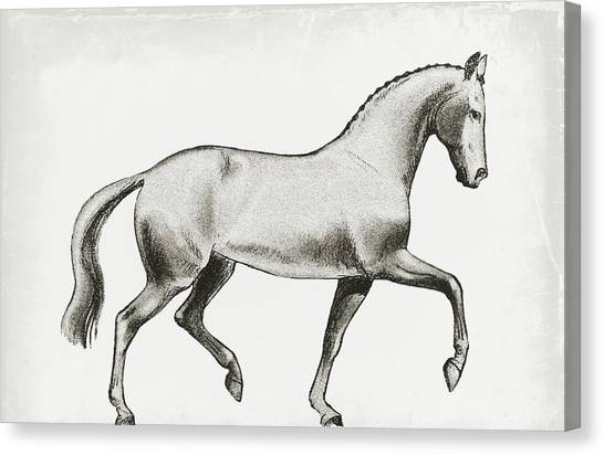 Passage Sketch Canvas Print by JAMART Photography