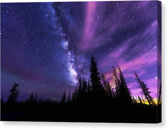 Pine Trees Canvas Print - Passing Hours by Chad Dutson
