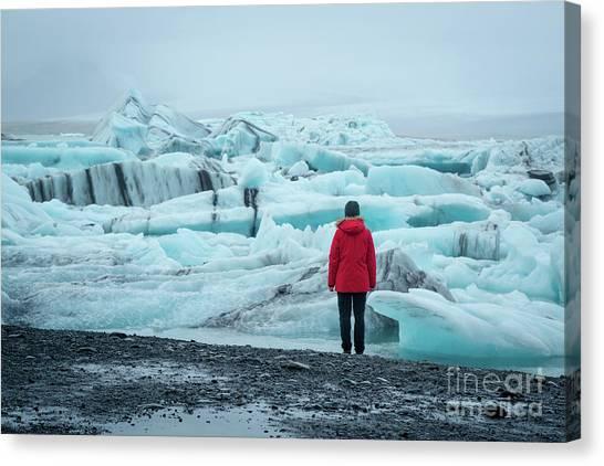 Glacier Bay Canvas Print - Passing Icebergs  by Michael Ver Sprill